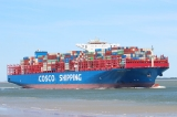 Cosco20Shipping20Virgo202831-05-202020Walsoorden29.jpg